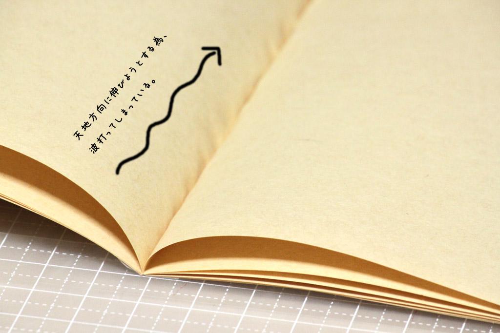 紙伸びのシワ1